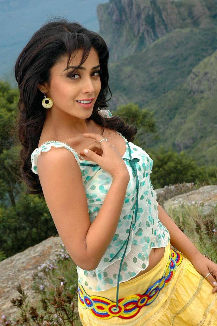 Shriya Saran Cute Sexy Pic