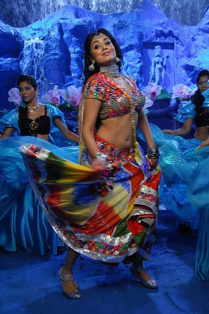 Shriya Saran Latest Hot in Don seenu