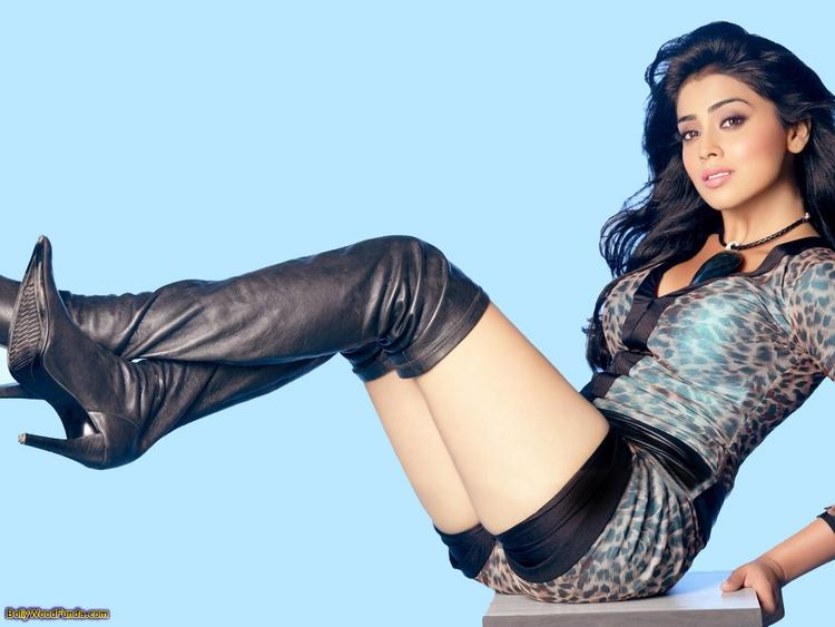 Shriya Saran Spicy Pose Photo Shoot