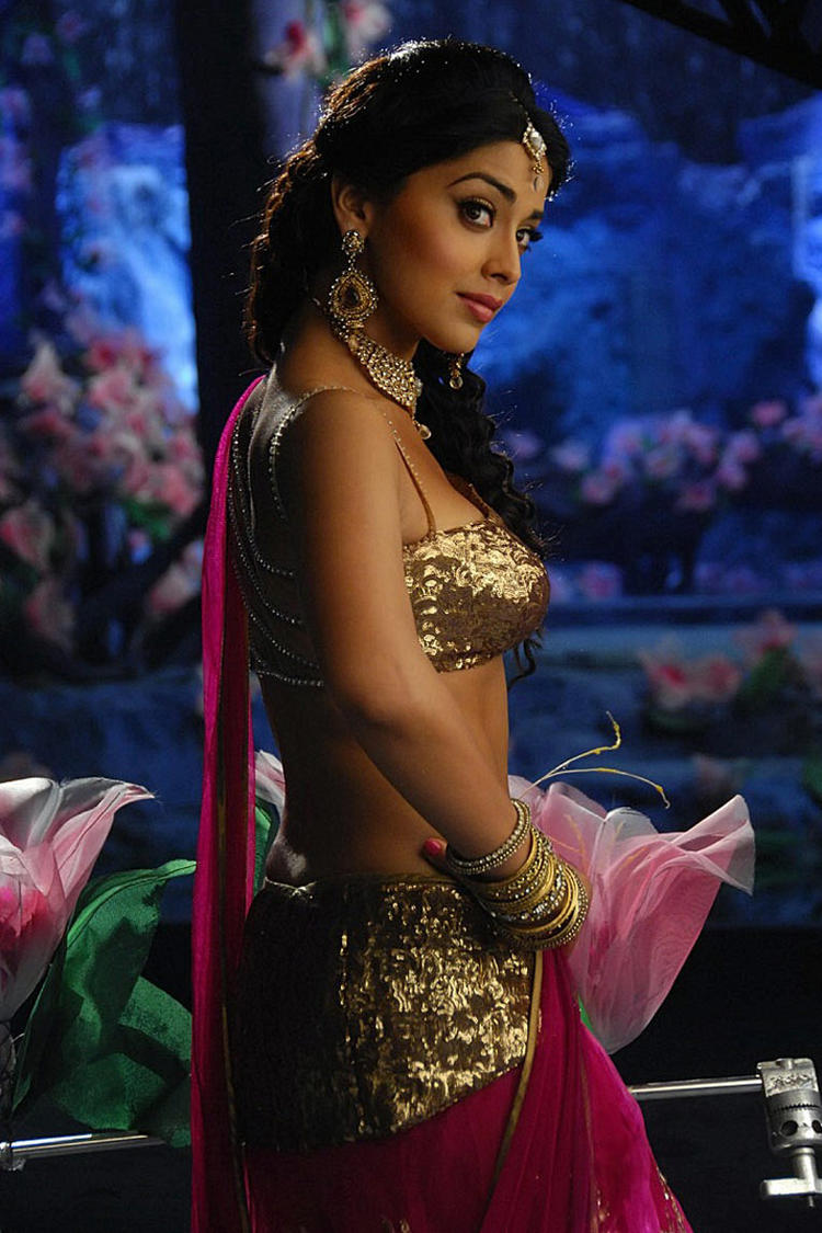 Shriya Sexy Look in Don Seenu