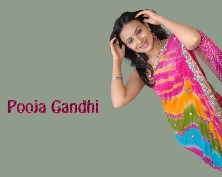Pooja Gandhi Sexy Photo In Saree