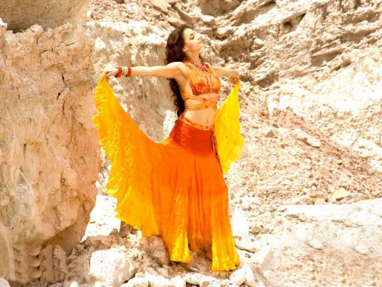 Diya Mirza Beautiful Dress Stunning Pic