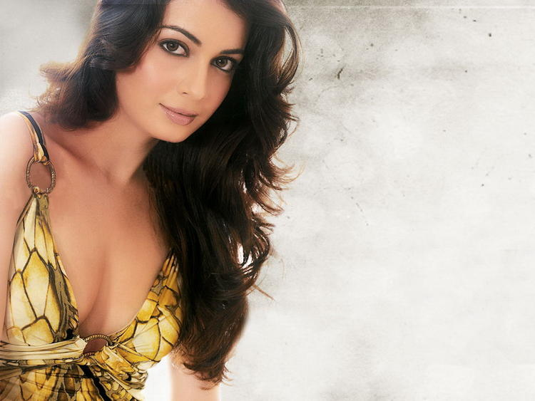 Diya Mirza Deep Cleavages Sexy Pic