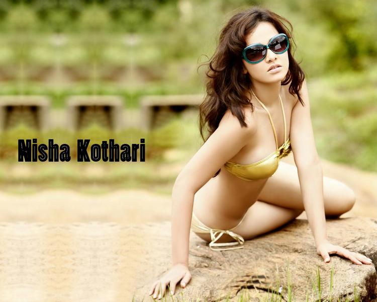 Nisha Kothari Attrative Shocking Pose Wallpaper