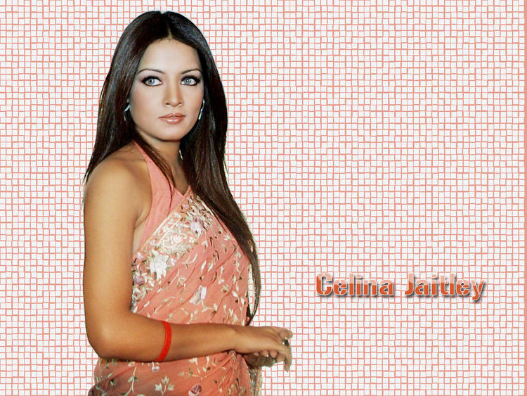 Celina Jaitley Gorgeus Saree Hot Wallpaper