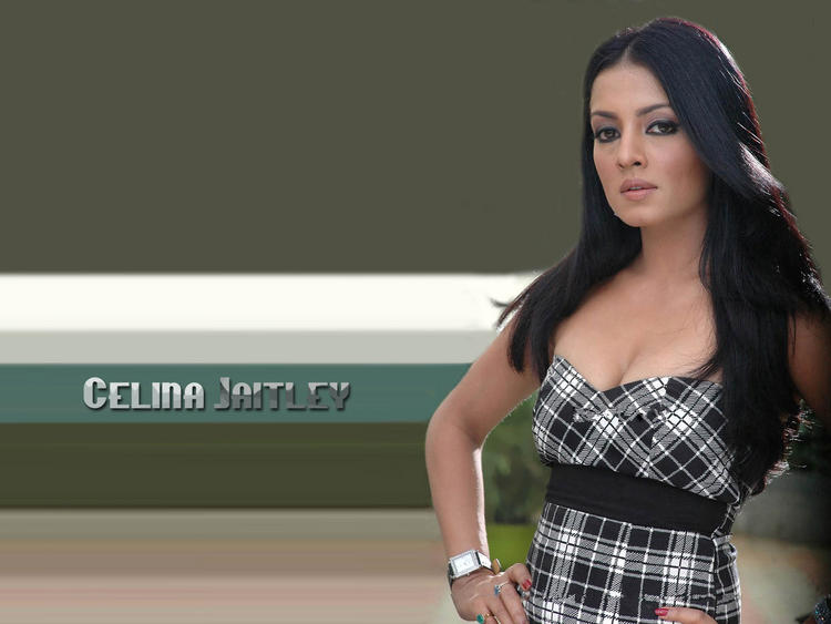 Celina Jaitley Hot and Sexy Wallpaper