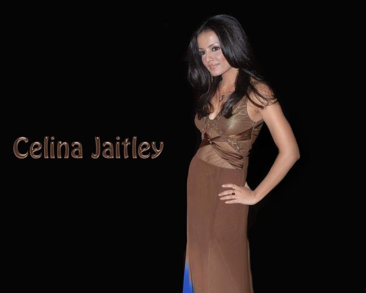 Celina Jaitley Hot Navel Pic Wallpaper