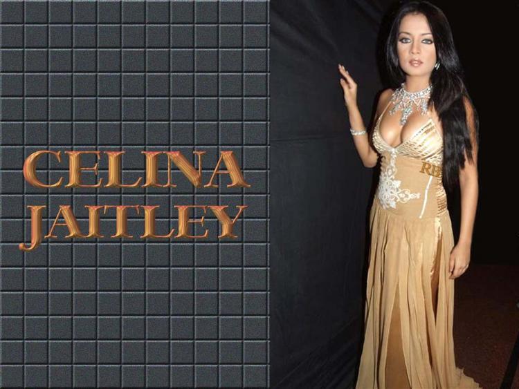 Celina Jaitley Sexy Gown Still