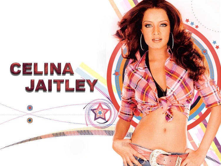 Celina Jaitley Sexy Navel Pic Wallpaper