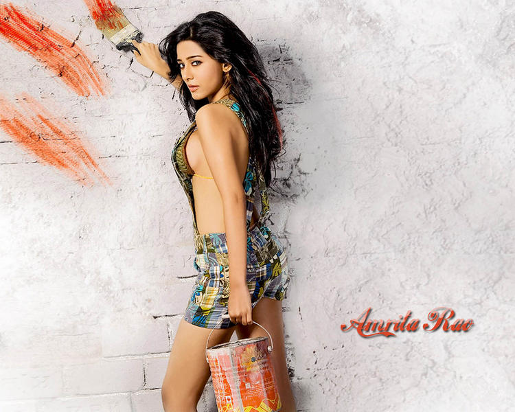 Sexy Amrita Rao Hot Wallpaper
