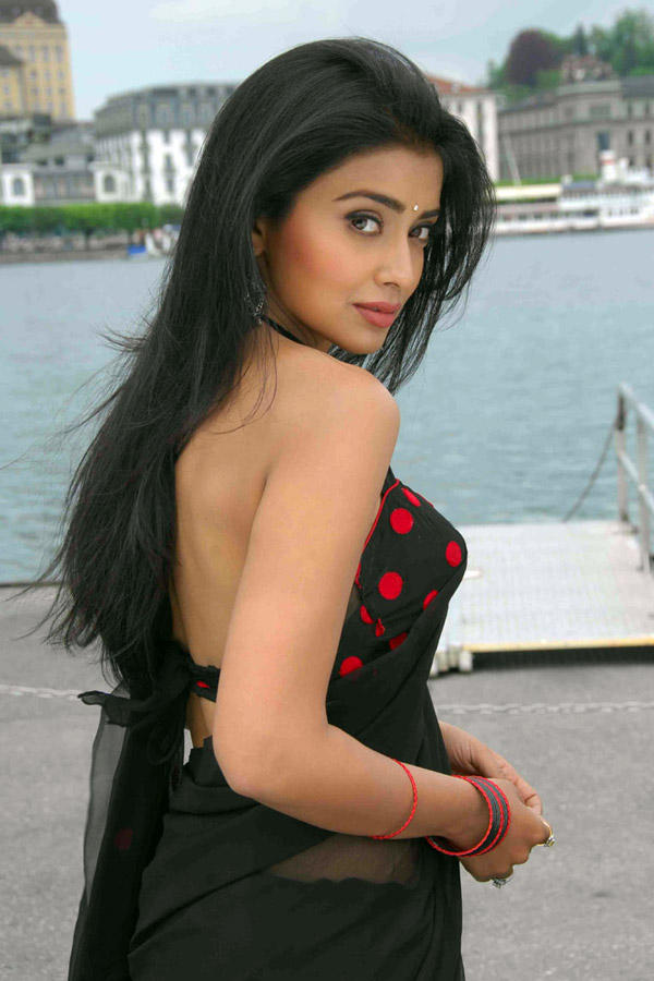 Shriya Saran Sizzling Still In Don Seenu