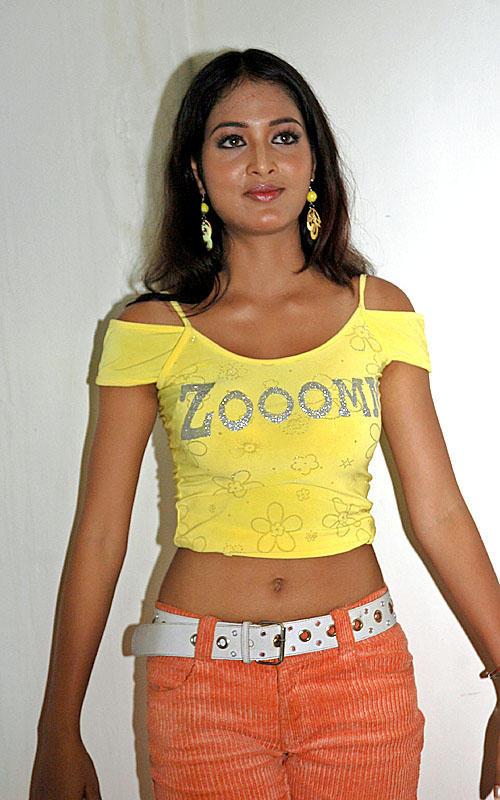 Vidisha Hot Navel Show Glamour Photo