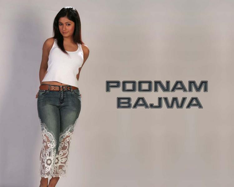 Poonam Bajwa Cute Pose Wallpaper