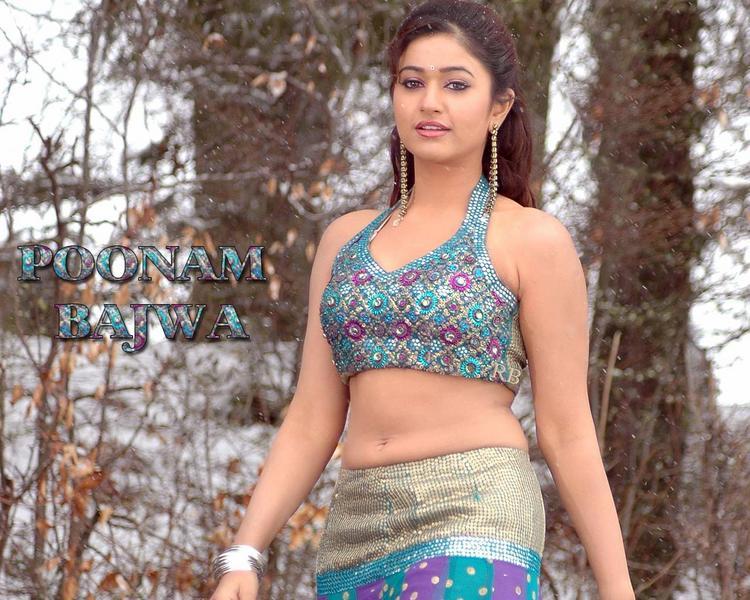 Poonam Bajwa Hot Navel Pic