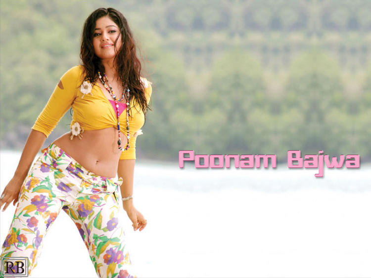 Poonam Bajwa Sexy Belly Exposing Still