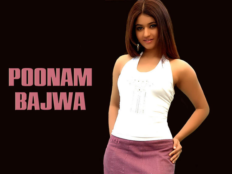 Poonam Bajwa Silky Hair Awesome Wallpaper