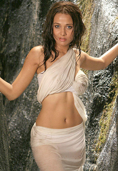 Nisha Kothari Wet Swim Sexy Saree Still