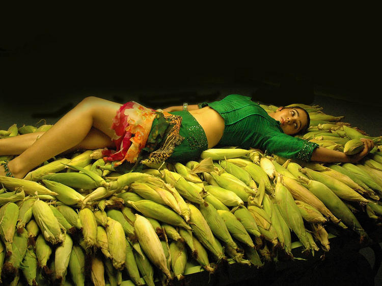 Charmy Kaur Latest Spicy Photo Shoot