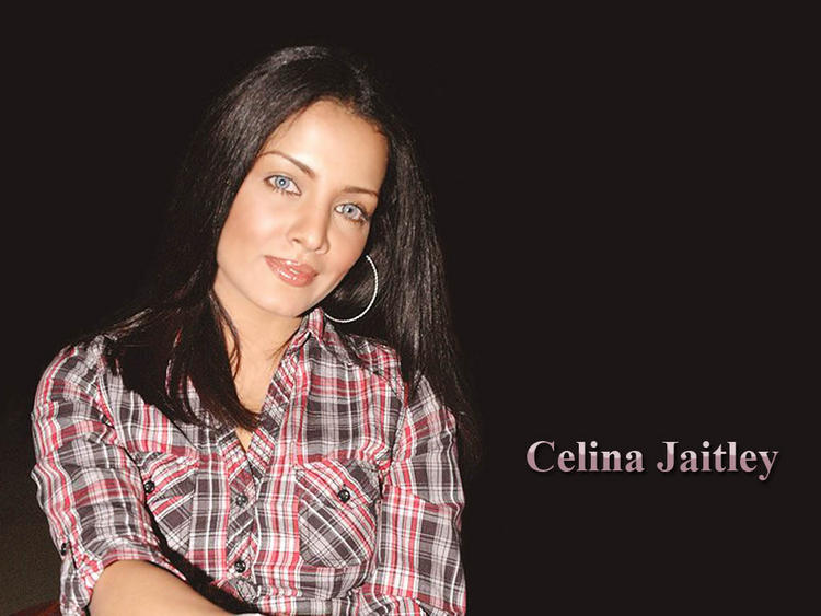 Celina Jaitley Dazzling Face Look Wallpaper