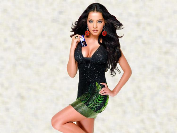 Celina Jaitley Hot And Sexy Wallpaper