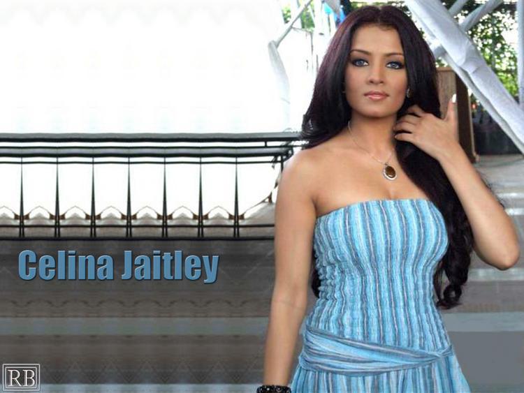 Celina Jaitley Strapless Dress Wallpaper