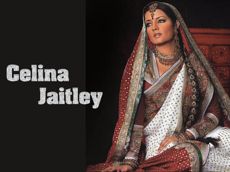 Celina Jaitley Traditional Look Wallpaper