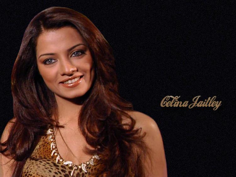 Smiling Celina Jaitley Hot Wallpaper