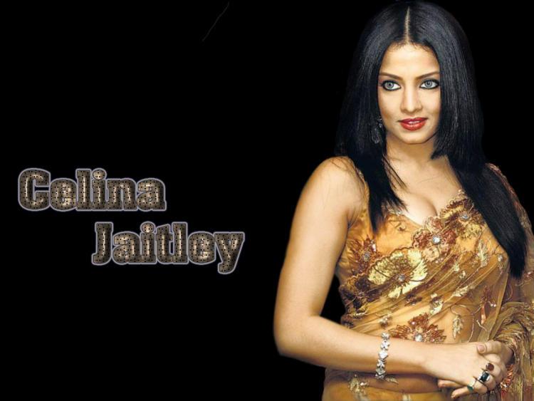 Celina Jaitley Hot Eyes Wallpaper