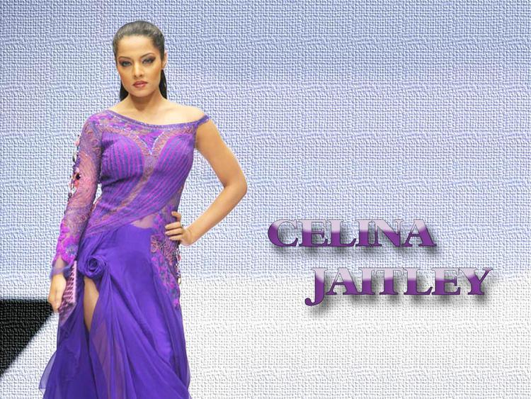 Celina Jaitley Modeling Pose Wallpaper