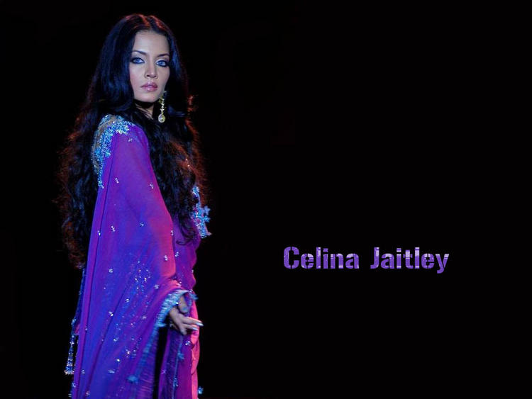 Celina Jaitley Nice And Cool Wallpaper