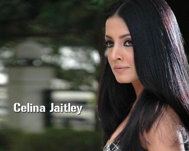 Celina Jaitley Side Face Look Wallpaper