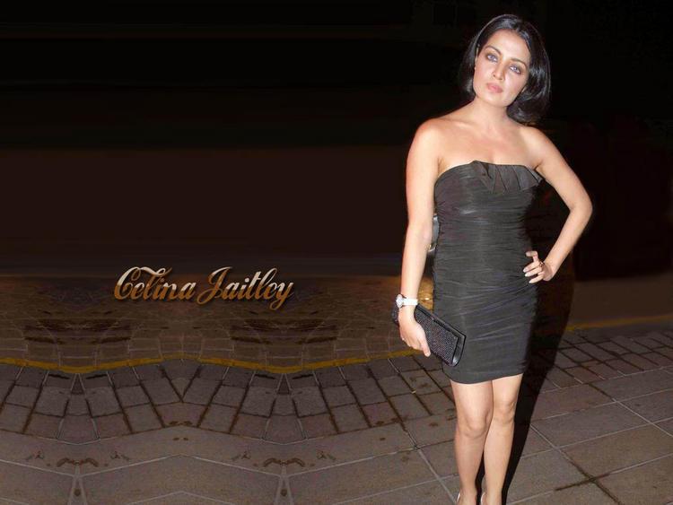 Celina Jaitley Strapless Black Dress Wallpaper