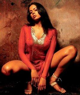 Sameera Reddy Sexy Thighs Show Wallpaper