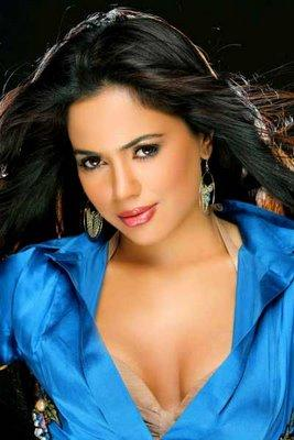 Sameera Reddy Spicy And Hot Look Wallpaper