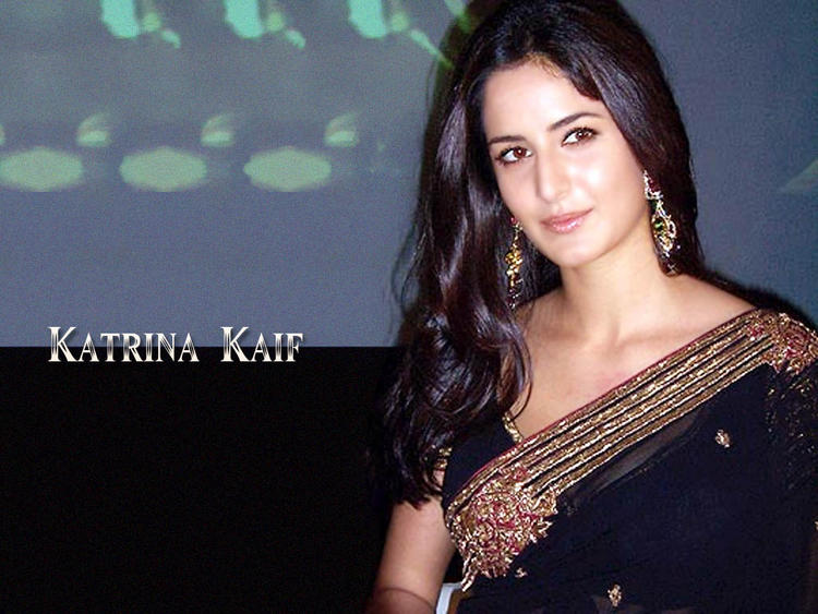 Katrina Kaif Attractive Look In Saree