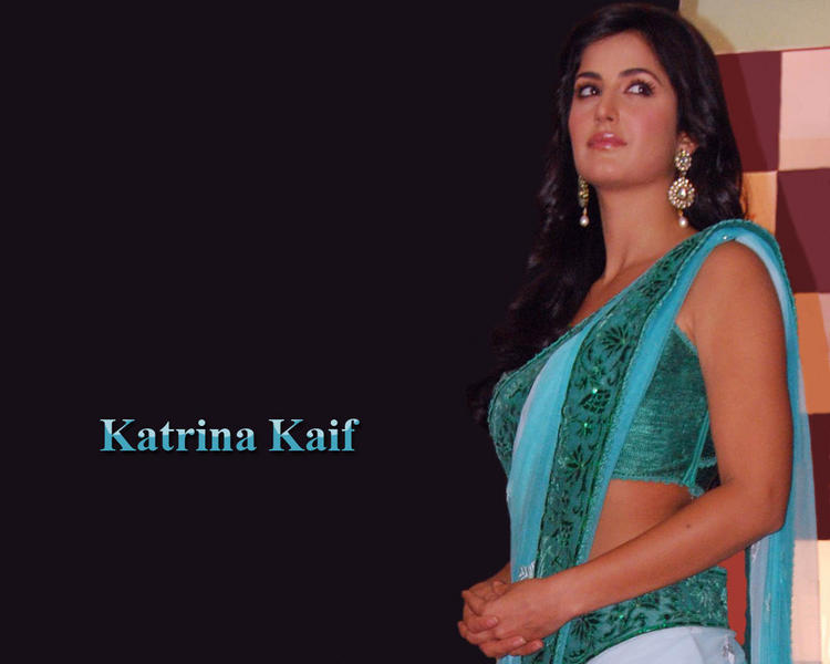 Katrina Kaif Wallpaper In Sexy Saree