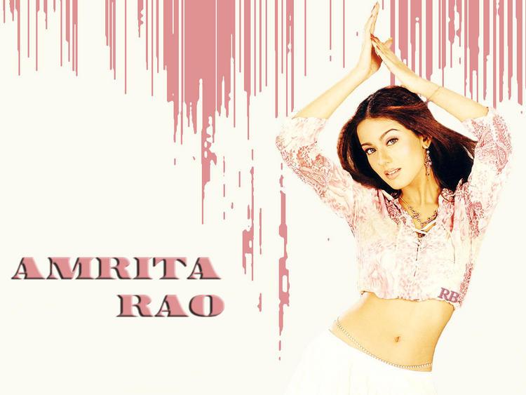 Amrita Rao Spicy Navel Exposing Wallpaper