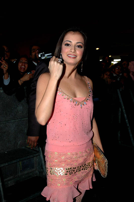 Diya Mirza Pink Dress Sexy Still