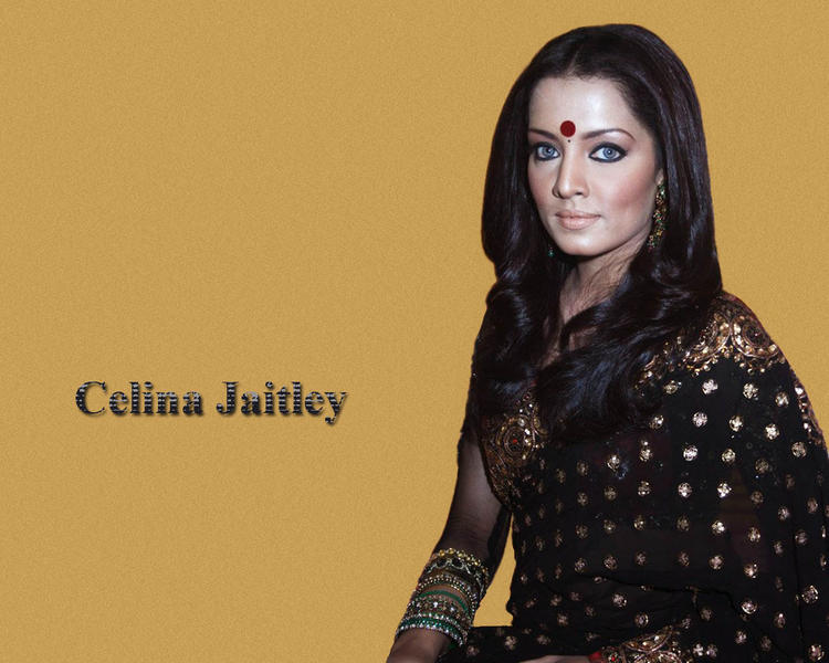 Celina Jaitley In Black Saree Sexy Wallpaper