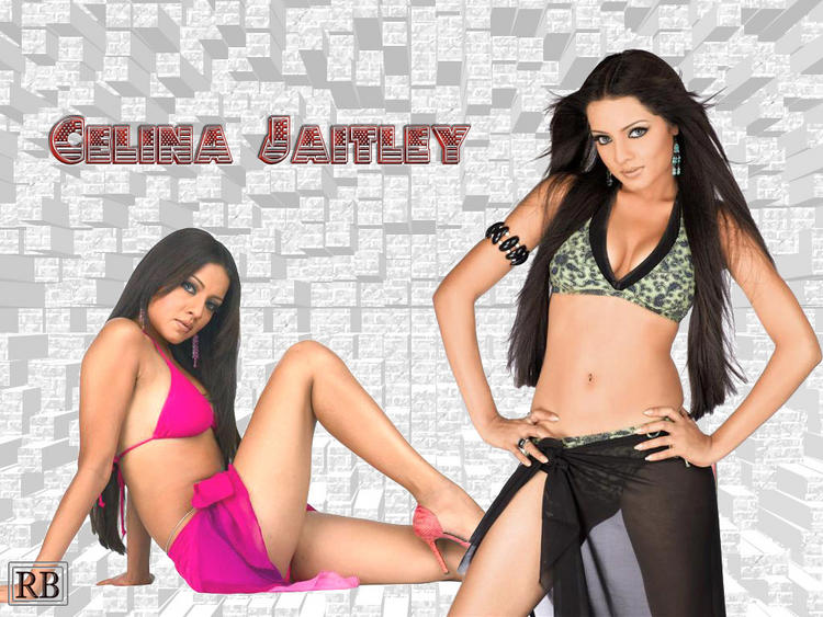 Celina Jaitley Busty Thighs Show Wallpaper
