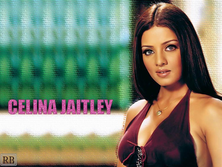 Celina Jaitley Nice Look Wallpaper