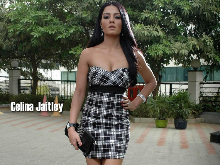 Celina Jaitley Strapless Dress Wallpaper
