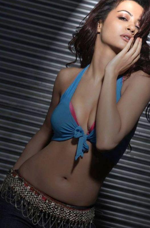 Surveen Chawla Sexy Navel Show Photo Shoot