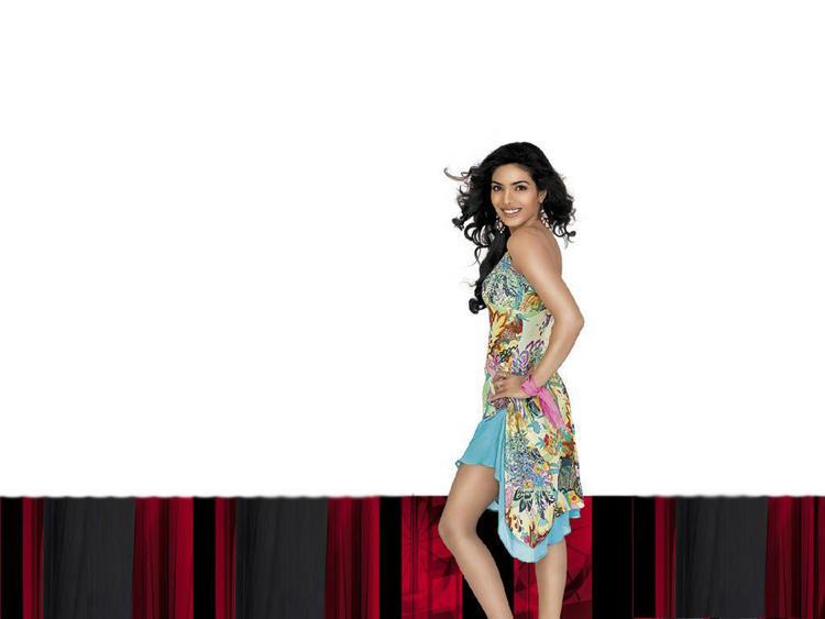 Glam Diva Priyanka Chopra Photo