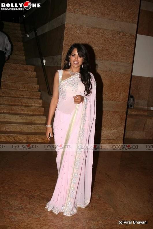 Sameera Reddy In Saree Pics