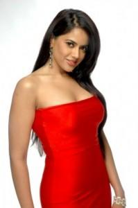 Sameera Reddy Strapless Red Dress Hot Wallpaper