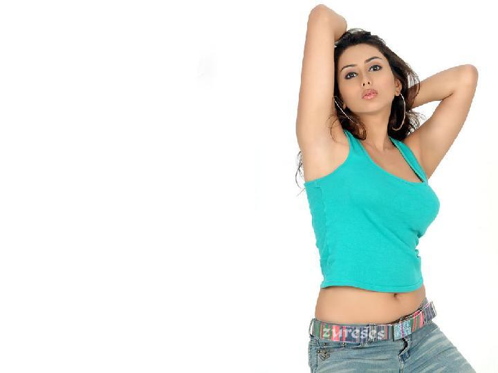 Namitha Hot and Sexy Wallpaper