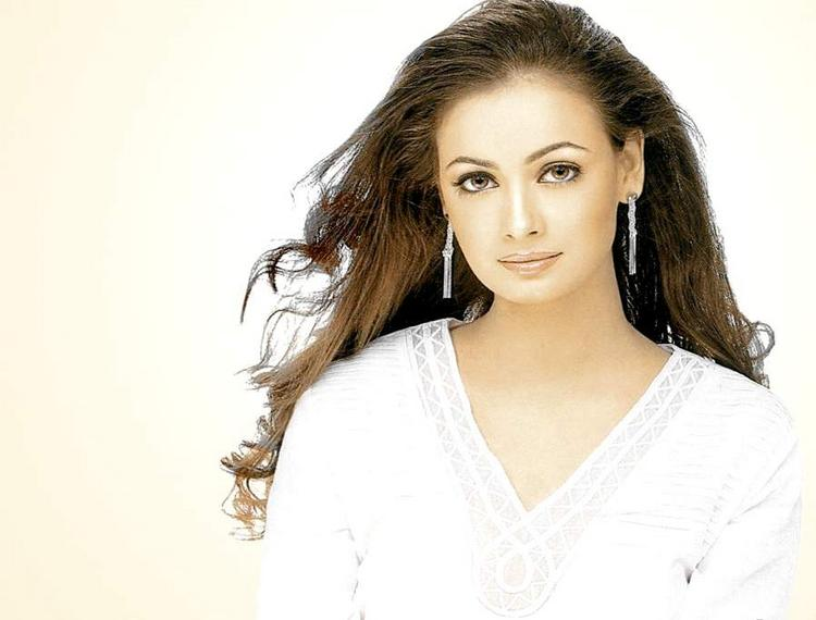 Diya Mirza Attractive Look Pic