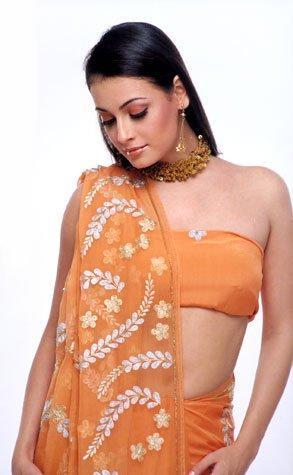 Diya Mirza Sexy Pose Still