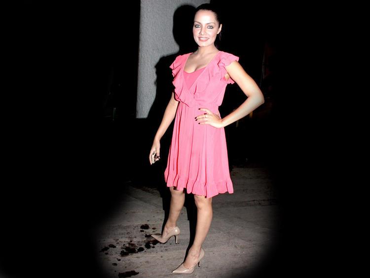 Celina Jaitley Pink Dress Stunning Pic